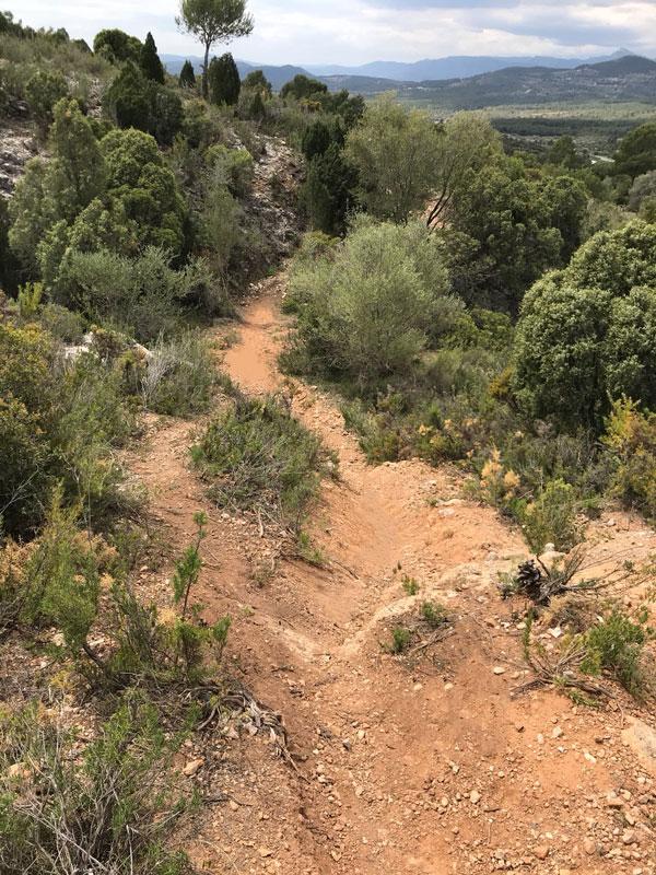 Limpiando el recorrido VII Marxa Btt Els Rosildos 2018